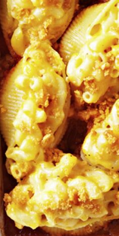 Macaroni and Cheese Jumbo Stuffed Shells - a marriage of two top comfort foods! Makes a great potluck dish or something unique to serve at a party.