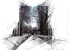 """Képtalálat a következőre: """"tree 2D png"""""""