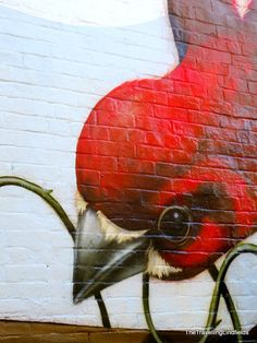 Street art in Sydney ✌️Street Art Graffiti More Pins Like This At FOSTERGINGER @ Pinterest