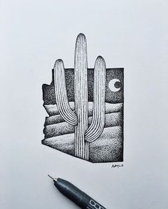 Looking through a bunch of 2015 drawings to add to my store after the art show. #cactus #Arizona #art #illustration