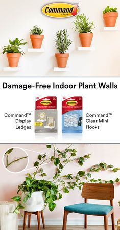 Create a plant wall damage-free with Command™ Brand. Display small plants on Command™ Display Ledges and grow your own greenery wall with Command™ Clear Mini Hooks. #DamageFree