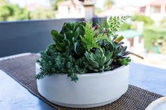 We specialize in customized content and creative production that tells your company's story in a unique and memorable way. Moore Park, Centre, Planter Pots, Succulents, Digital, Succulent Plants
