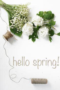 blog fotograficzny: hello spring i wspaniała książka
