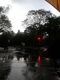 We get to Central Park and its pouring down rain, but still so beautiful!  First time I've seen rain like that in so long?