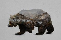 The Kodiak Brown Bear by Davies Babies
