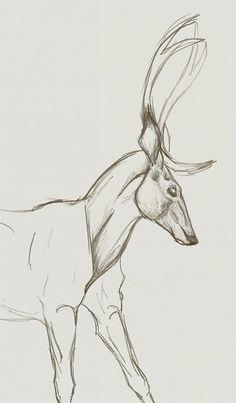 Deer by Fwatair.deviantart.com on @deviantART