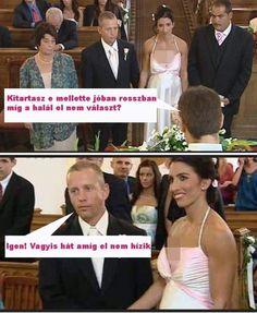 Haha, Life Hacks, Memes, Funny, Quotes, Quotations, Ha Ha, Meme, Funny Parenting