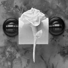 Origami toilet paper flower still attached wonder how long it rambling rose instructions in toilet paper origami by linda wright http mightylinksfo