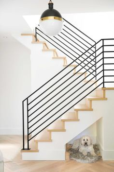 Jillian Harris Update on Kenny and Michelle Gemmills Home Renovation - Modern Stair Case - Dog Nook in Stairs - Modern Farmhouse Stairs - Black Stair Railing Black Stair Railing, Stair Railing Design, Metal Stairs, Staircase Railings, Stairways, Painted Stairs, Banisters, Spiral Staircases, Staircase Ideas