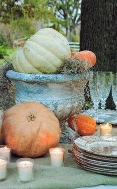 Love the idea of the pumpkin side the pot for fall. May look great on top of a white barrel.