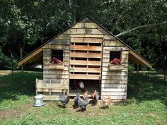 Chicken coop made from pallets!!!  I want this for the Guinnea Hens I want to get to eat ticks!