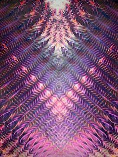 multi_fthr.jpg 525×700 pixels