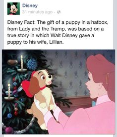 """The gift of a puppy in a hatbox from Lady and the Tramp, was based on a true story in which Walt Disney gave a puppy to his wife, Lillian"" Disney Pixar, Walt Disney, Disney Nerd, Disney And Dreamworks, Disney Girls, Disney Animation, Disney Magic, Punk Disney, Princess Disney"