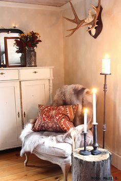 Vilthörna med stubbord, älghorn och renfäll, snyggt!