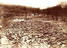Le flottage du bois
