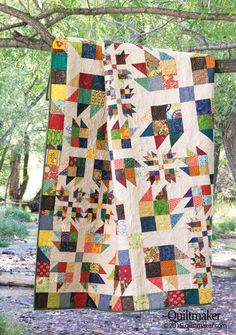 Traditional Bear Paw blocks are featured in 3 sizes in this spectacular scrap quilt designed by Emily Bailey.