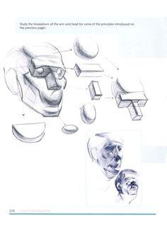 Figure Drawing Tutorial Michael hampton figure drawing - design and invention Human Anatomy Drawing, Human Figure Drawing, Anatomy Art, Drawing Heads, Nose Drawing, Figure Drawing Tutorial, Drawing Tutorials, Human Face Sketch, Geometric Shapes Art