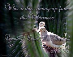 <3 Song of Solomon 8:5