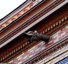 Desagües de canalera en forma de dragón en el Palacio de Velázquez en los jardines del Retiro. Drains in the form of a dragon in The Palace of Velázquez in the Gardens of El Retiro