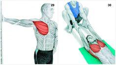 alongamento musculos 14