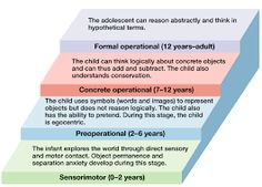 Jean Piaget Stages of Cognitive Development Chart - Bing images Piaget Stages Of Development, Child Development Stages, Emotional Development, Jean Piaget, Educational Theories, Educational Psychology, Developmental Psychology, Child Development Psychology, Human Growth And Development