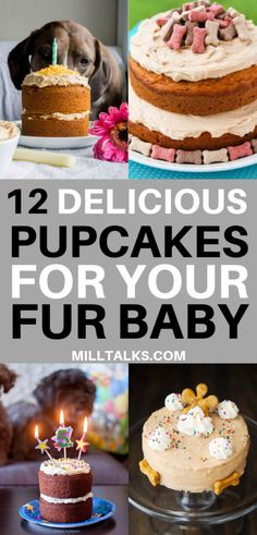 Millennial Talks - 12 Delicious Cake Recipes for Dogs Dog Cake Recipes, Dog Biscuit Recipes, Delicious Cake Recipes, Dog Treat Recipes, Yummy Cakes, Dog Food Recipes, Gourmet Dog Treats, Homemade Dog Treats, Healthy Dog Treats