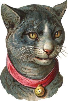 Glanzbilder - Victorian Die Cut - Victorian Scrap - Tube Victorienne - Glansbilleder - Plaatjes : Katzen - cats - chats
