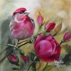 Rose Bird~ Paulie Rollins