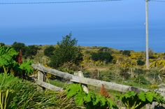 Looking out to the Sea. Co Kerry Ireland. You must look closely to see where the sky stops and the sea begins.