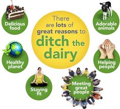 The benefits to #ditchDairy and #goVegan! #farm365 #MilkTruth #diary #realDairy #RealMilk #Milk #GrassToMilk #cheese
