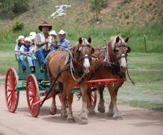 Image detail for -Bonnie and Blanche giving the kids a ride to the Ranch Rodeo!
