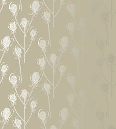 Teasels Wallpaper by Independent Designers | Jane Clayton