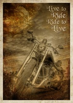 LIVE TO RIDE~RIDE TO LIVE