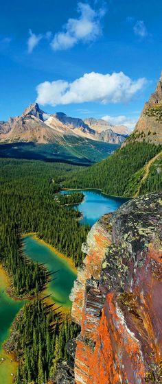 ☆  Impactante e revigorante! Lake O'Hara, Yoho National Park, British Columbia. M.M