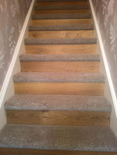 Starting A New Trend Oak Laminate Flooring To The Riser And New Thick  Saxony Carpet Onto Tread. Transforming An Old Staircase In Something  Fashionable And ...