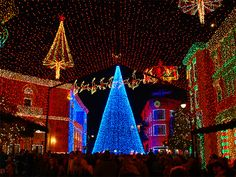 """Best Christmas lights EVER--the """"Osborne Family Spectacle of Dancing Lights"""" at Disney World"""