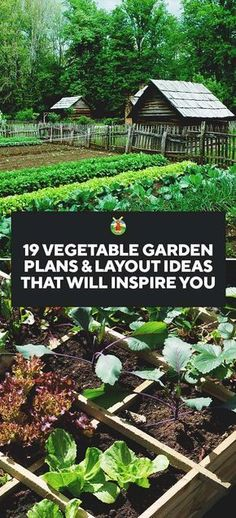 19 Vegetable Garden Plans #vegetablegardenplans