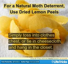 Insects - For a Natural Moth Deterrent, Use Dried Lemon Peels