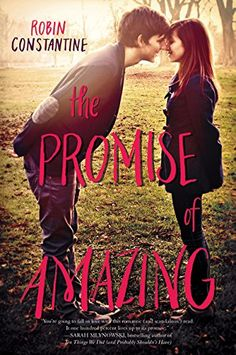 The Promise of Amazing by Robin Constantine http://www.amazon.com/dp/0062279491/ref=cm_sw_r_pi_dp_ydrzwb1KVX810