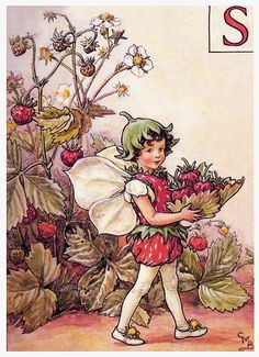 THE STRAWBERRY FAIRY | by star1950