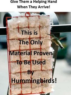 Hummer Helper Cage and Nesting Material. Includes hanger full of material. The Hummer Helper Nesting Material kit helps take the place of spider webs and lichen in lining the tiny nests. Hummingbird Swing, Hummingbird House, Hummingbird Nests, Hummingbird Plants, Humming Bird Feeders, Humming Birds, Bird Suet, Bird Nesting Material, Hummingbird Migration