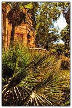 Malta - San Anton garden
