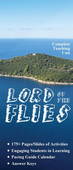 lord of the flies a microcosm to our society essay 'lord of the flies' was written by a man called william golding and was first published in 1954 and shocked the nation, as the thought of the boys killing each other shocked the nation we will write a custom essay sample on any topic specifically for you for only $1390/page.