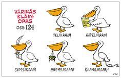 Eläinlajit 124 pelikaani Learn Finnish, Finnish Language, Ancient Aliens, Finland, Vocabulary, Nerdy, Beautiful Pictures, Cartoon, Comics