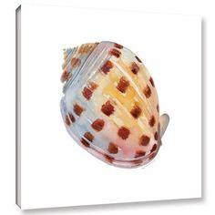 "Beachcrest Home Bonnet Painting Print Wrapped on Canvas Size: 18"" H x 18"" W x 2"" D"