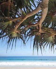 Noosa, QLD ~ Noosa you stunner ☀️📸 via @misterweekender (IG) www.tinystyle.com.au #noosa #visitnoosa #sunshinecoast #noosakids #queensland Beau Hudson, Rock You Baby, Sunshine Coast, Beach Art, Palms, Landscape Paintings, Beaches, Coastal, Trees