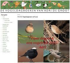 Zo mooi, Vogeldagboek.nl