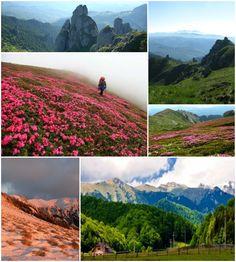 Child Friendly, Travel With Kids, Romania, Mountains, Children, Nature, Young Children, Boys, Naturaleza