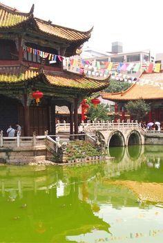 117 best kunming china images kunming travel china travel rh pinterest com