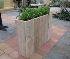 andamios de madera plantador-spelle3